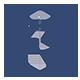 Praxis Ritter Logo